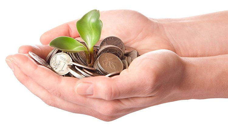 Incentivos fiscales para entidades de reducida dimensión