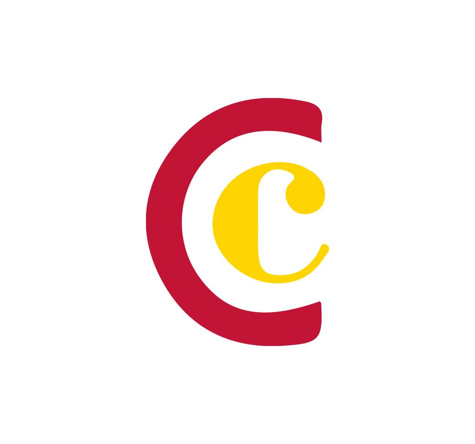 Logo Camara color